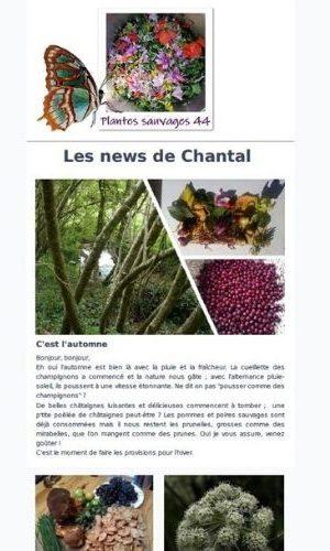 Chantal Biotteau - Newsletter
